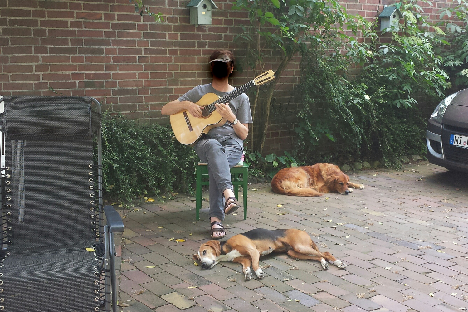 listen to music, sure again different dogs living there