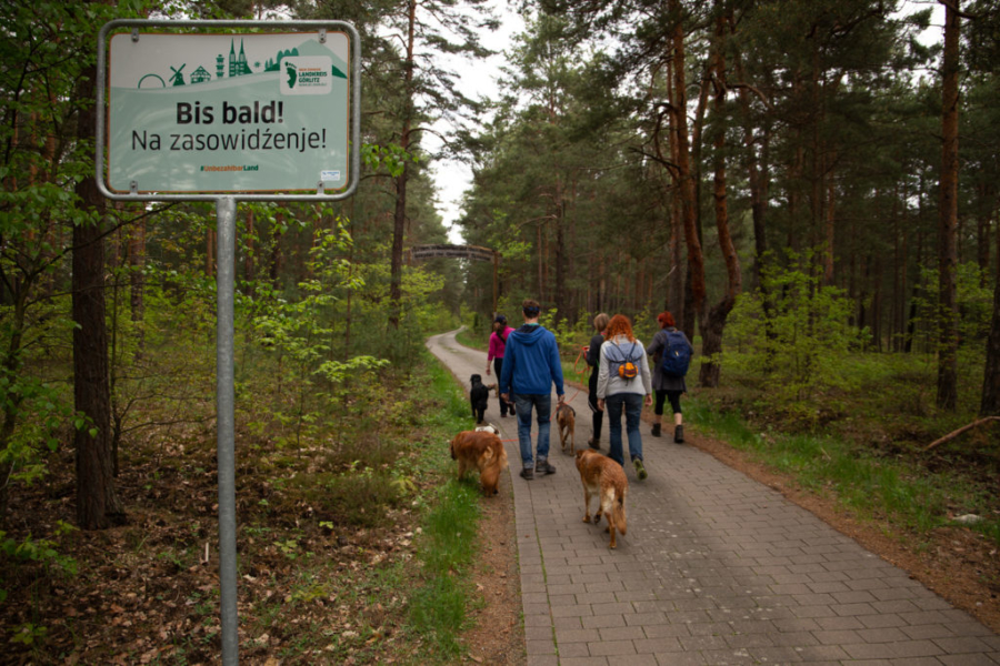 we do many dog-hiking-tours
